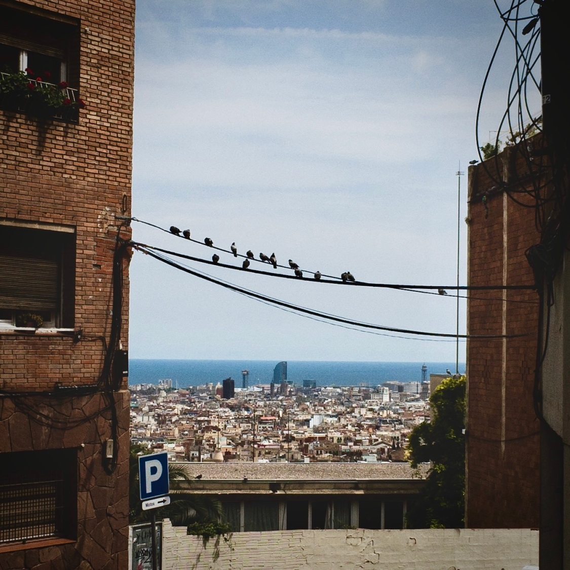 Spots to Visit in Barcelona, Spain: Viewpoints of Barcelona