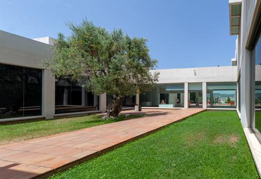 Fundació Miró: el patio del olivo